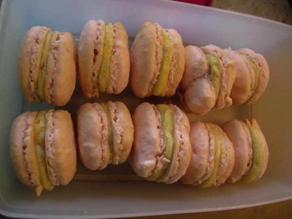 færdiglavede macarons