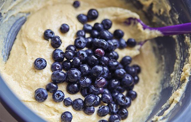 blåbærmuffins med friske blåbær
