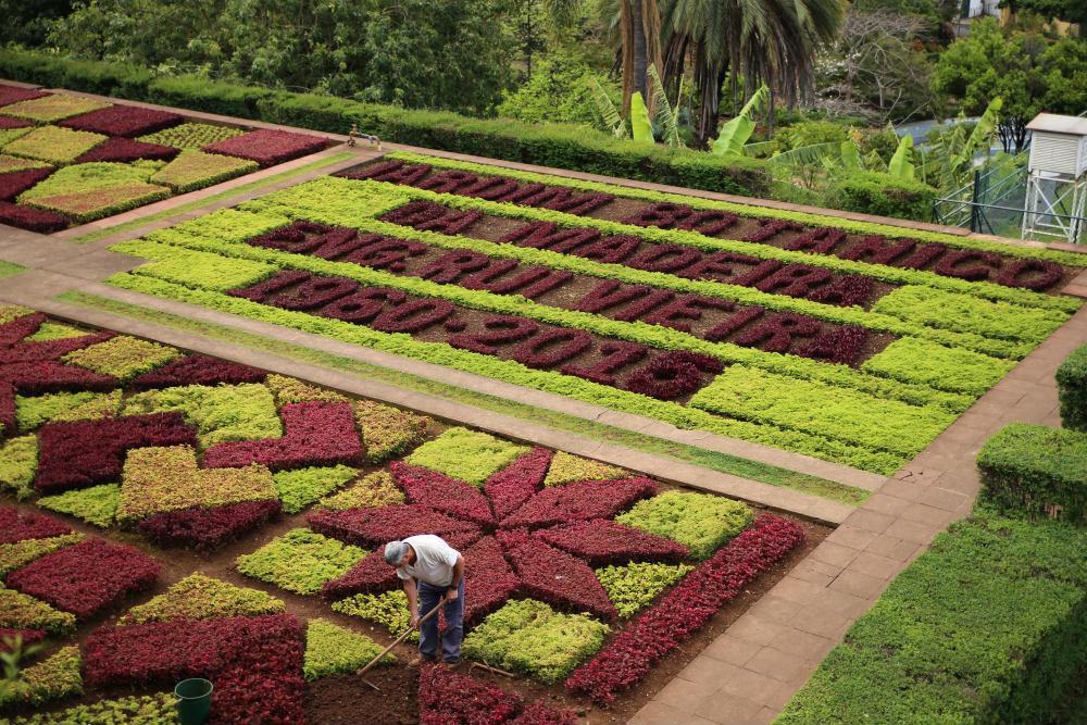 Botanisk have på Madeira